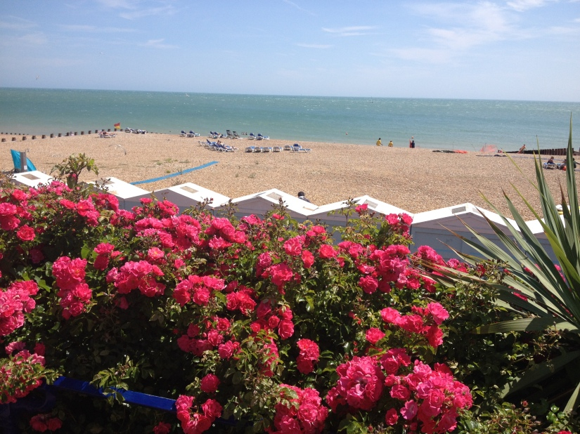 Flowers along the seafront